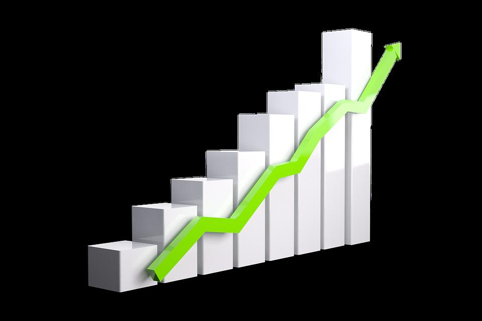 成長グラフ